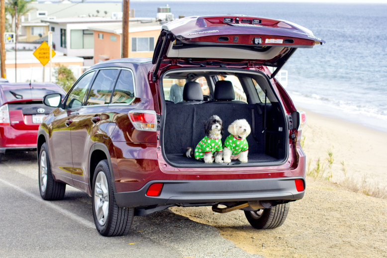 Malibu Beach, CA with the dogs and the Toyota Highlander