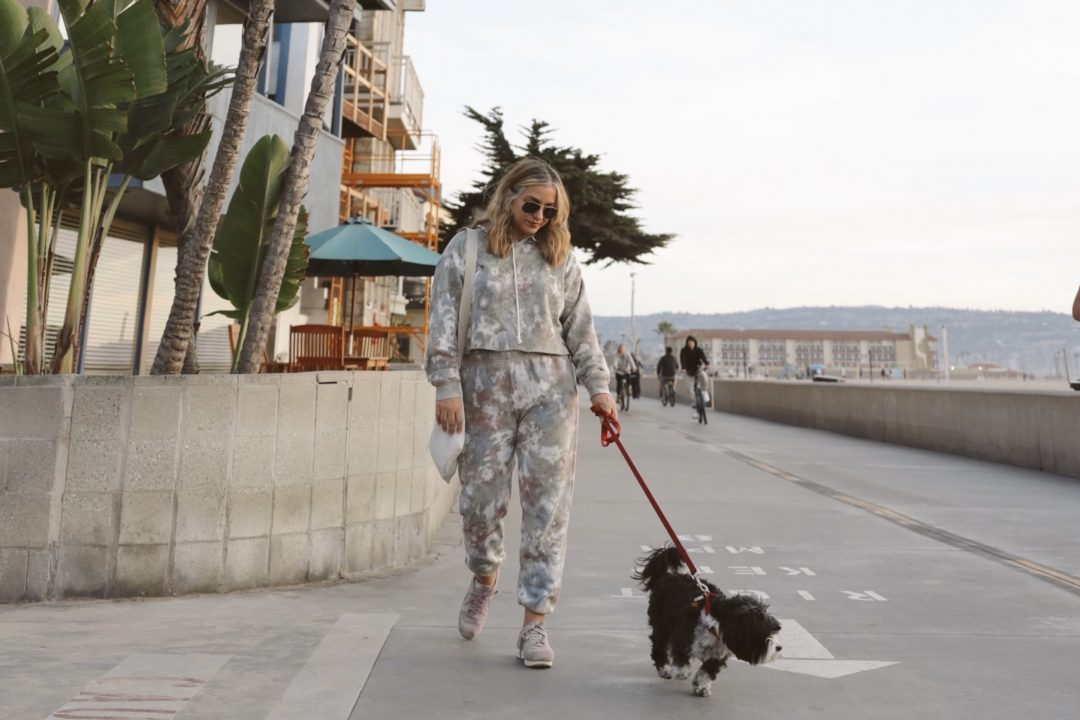 Manhattan Beach with my pet dog Stella