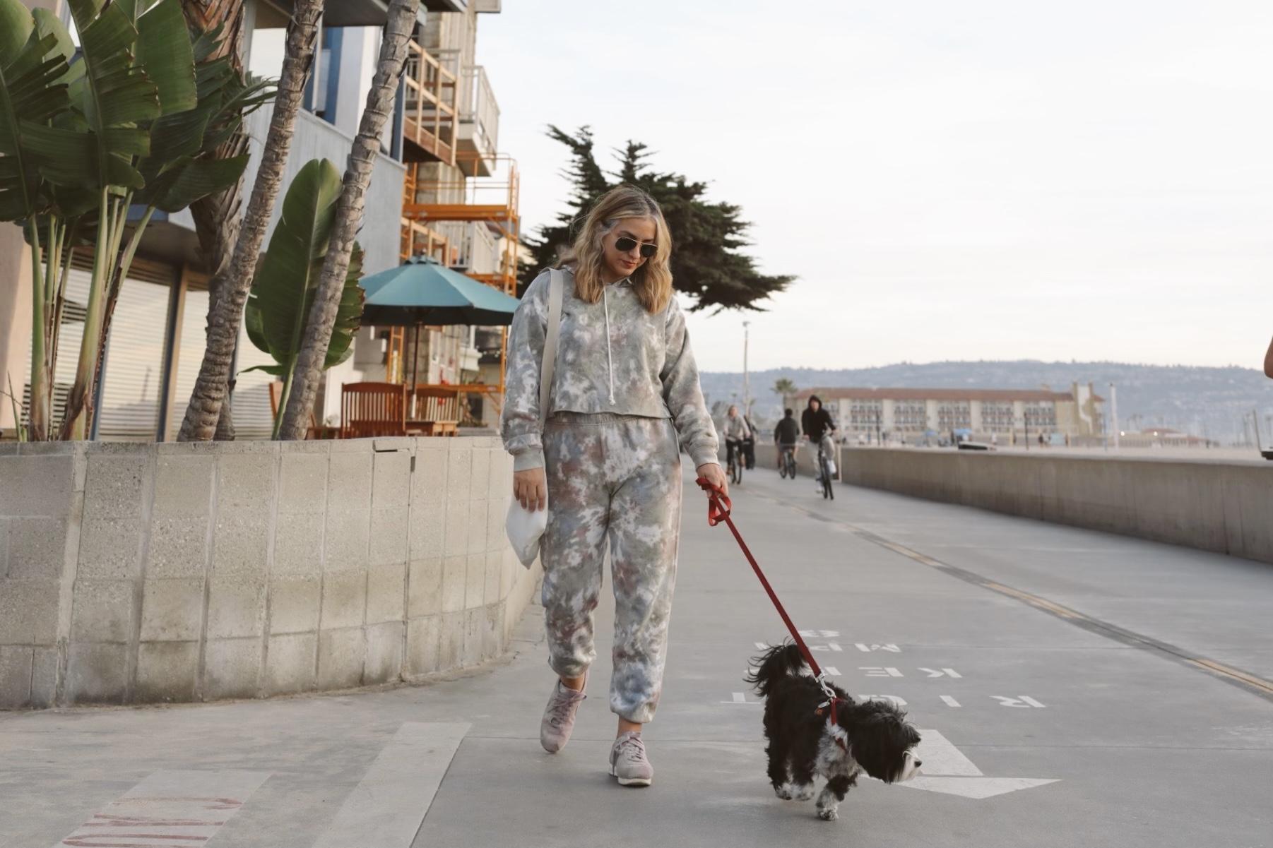 Manhattan Beach with my pet dog Stella